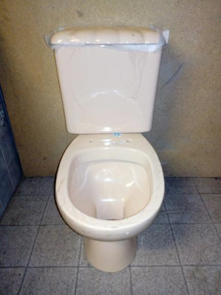peach colour shell wc loo toilet lavatory